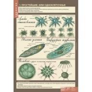 Учебный альбом Биология