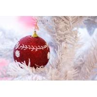 Интернет-магазин Academic Store поздравляет Вас с Новым Годом и Рождеством!