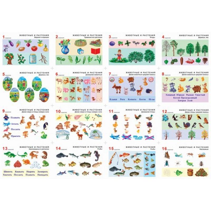 """Комплект таблиц. Окружающий мир 5-6 лет. """"Животные и растения""""."""