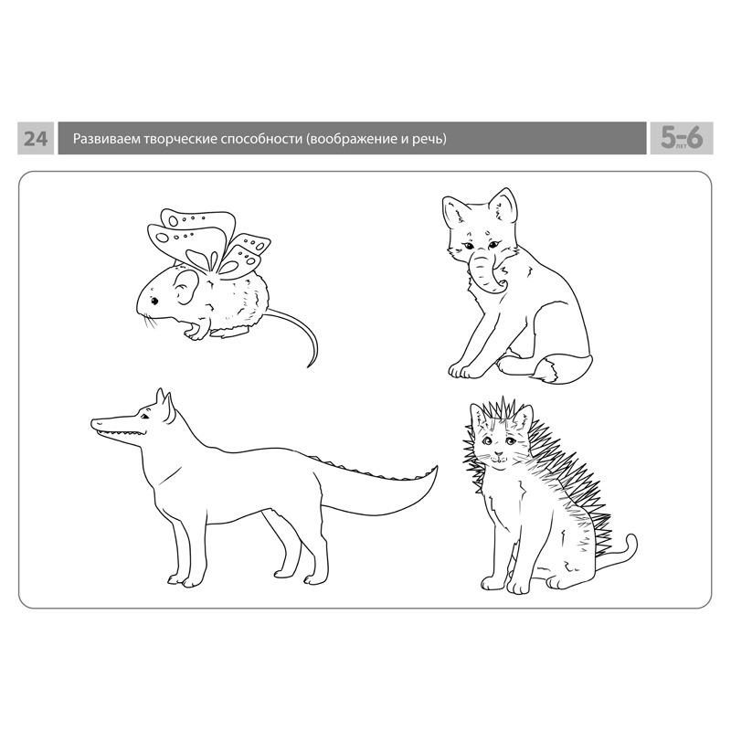 Комплект карточек с заданиями для групповых занятий с детьми от 5 до 6 лет. Развиваем творческие способности (воображение и речь).