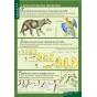 БИОЛОГИЯ 10-11 кл. Эволюционное учение.