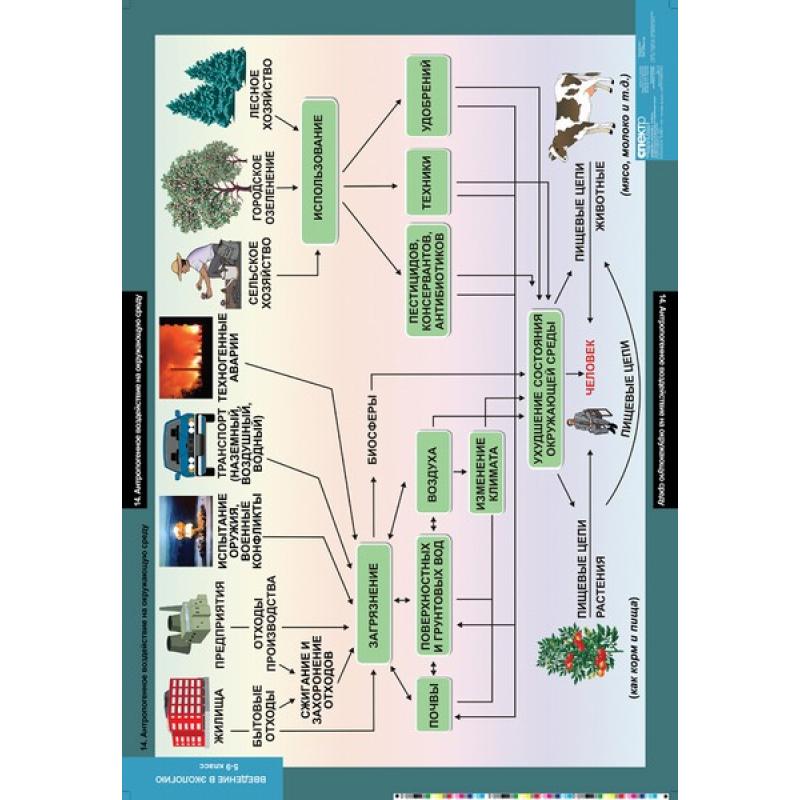 БИОЛОГИЯ Введение в Экологию