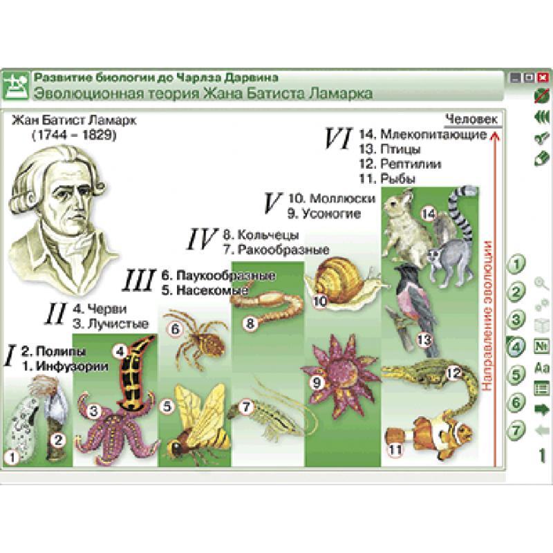 Наглядная биология. 10 - 11 классы. Эволюционное учение