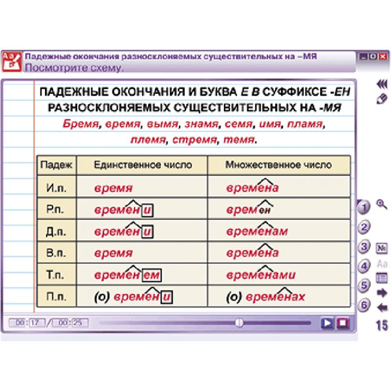 Наглядный русский язык. 5 класс